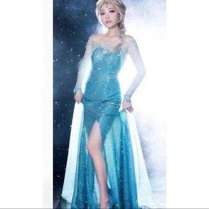 Disney Frozen Elsa Halloween Costume Dress